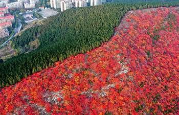 Scenery of Xiezi Mountain in China's Shandong