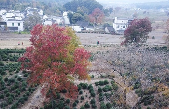 Autumn scenery of Tachuan Village in E China