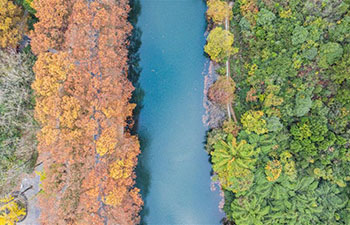 Autumn scenery of Huaxi National City Wetland Park in Guiyang
