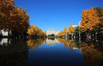 In pics: scenery of Tsinghua University in Beijing