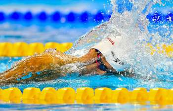 Highlights of FINA Swimming World Cup