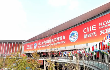 China's import expo shows world's chorus of openness and cooperation