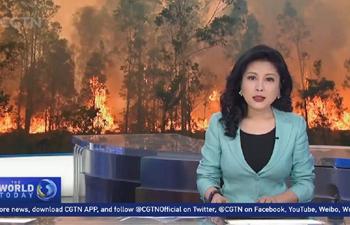 Australian residents along east coast brace for extreme fires