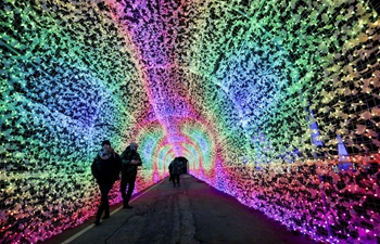 Aurora Winter Festival held in Vancouver, Canada