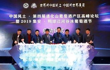 Ice wine festival kicks off in Ji'an