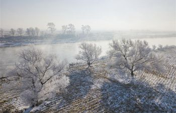 Frost scenery at Wusong Island scenic spot in Jilin