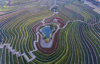 Aerial view of terraced fields in Shexiang ancient town, China's Guizhou