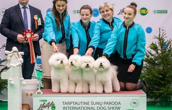 Int'l dog show held in Vilnius, Lithuania