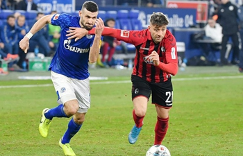 German Bundesliga: Schalke 04 vs. Freiburg
