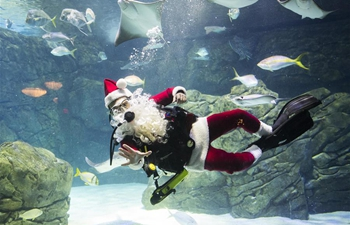 In pics: Santa Claus diving show in Toronto's aquarium