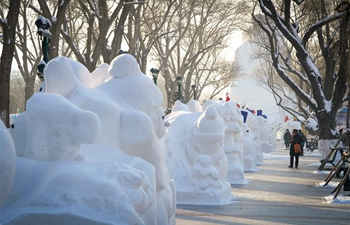 In pics: 2,020 snowmen stand in Harbin to greet New Year