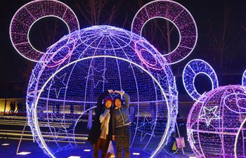 Light show held in Nanjing, China's Jiangsu