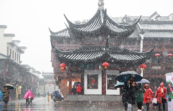 Snowfall hits Nanjing, E China's Jiangsu