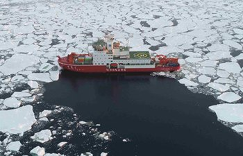 "China's icebreaker to travel through ""roaring forties"" from Cosmonauts Sea"