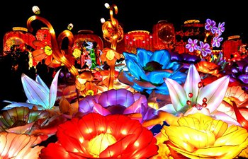 Lantern fair kicks off in Sanmenxia City, China's Henan