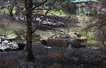 Aftermath of bushfire in town of Mogo, Australia