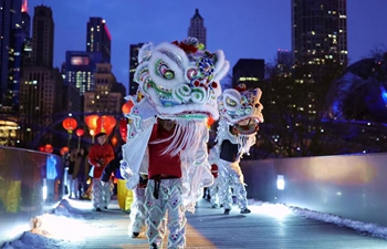 "Event called ""Lantern Celebration"" held in Chicago, U.S."