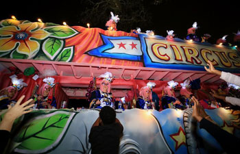 In pics: Krewe of Nyx parade in New Orleans of Louisiana, U.S.