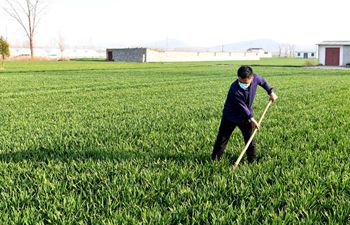 Villagers work in fields in Henan