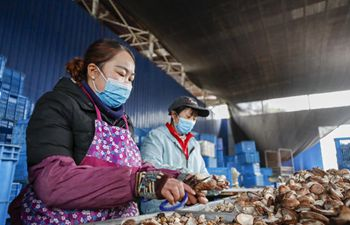 Poverty alleviation industrial base resumes production in Chongqing