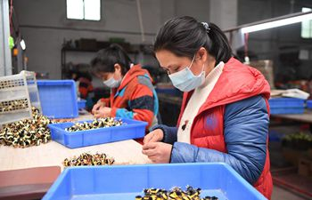 Poverty alleviation workshops resume production in Hunan