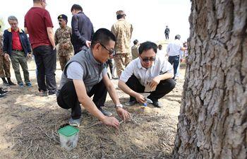 Chinese locust experts check locust siuation in Tharparkar desert, Pakistan