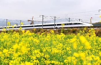 In pics: Congjiang section of Guiyang-Guangzhou high-speed railway in Guizhou