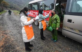 Tea gardens begin first harvest of spring tea under prevention measures in Zhejiang