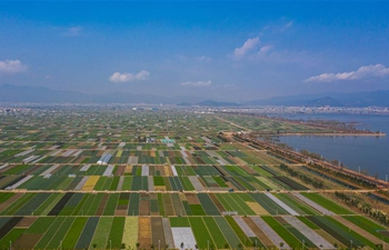 Spring scenery of fields in Tonghai, Taiyuan