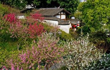 Spring scenery of Wushan scenic spot in Fuzhou