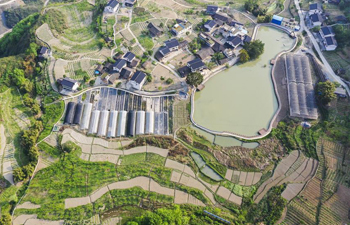 Spring scenery of Yanshanhong Village in Chongqing
