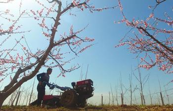 Farmers work in field across China