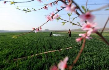 Farmers busy with spring ploughing across china