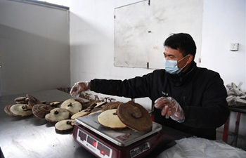 Poverty alleviation workshops resume work, production in Feixi County, Anhui
