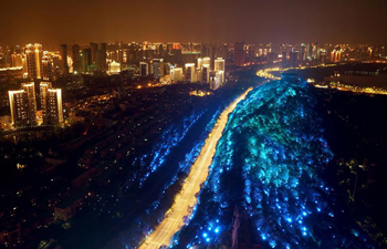 Light show themed on fighting COVID-19 staged in Wuhan