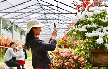 Flower industry helps locals increase income in Zhouning, Fujian
