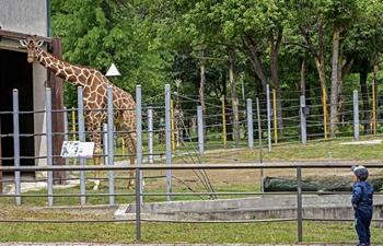 Skopje Zoo reopens to public