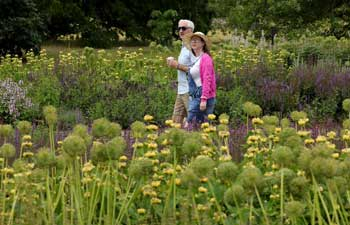 In pics: Kew Gardens reopens to public