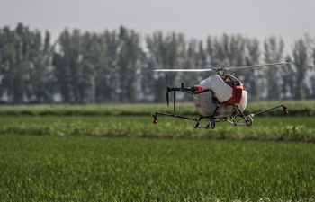 Unmanned aerial vehicles put into use for spraying pesticide in Yingkou, Liaoning