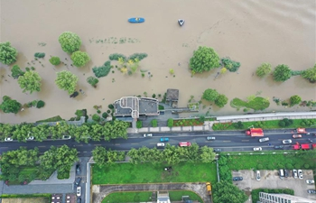 Water level of Yangtze River's Nanjing section exceeds warning level