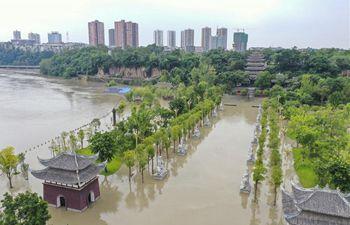 Heavy rainfall brings flood to Tongnan, SW China's Chongqing