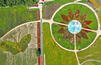 In pics: flower fields at Lianhuashan ecological tourism resort in Jilin
