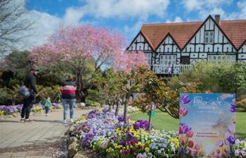 Annual flower festival held in Cockington Green Gardens in Canberra, Australia