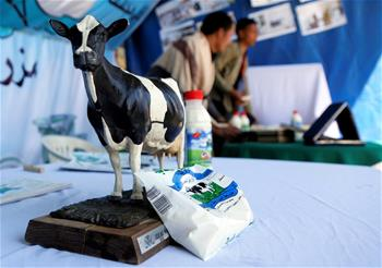 Annual agricultural festival starts in Sanaa, Yemen