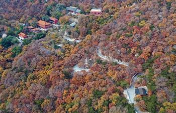 Autumn scenery of Panshan Mountain scenic resort in north China's Tianjin