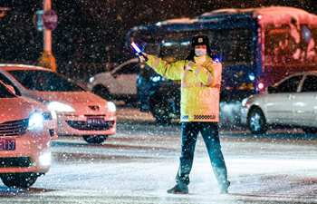 Days of continuous snowfall hits Xinjiang