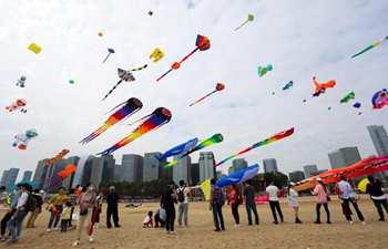 Kite festival held in Xiamen