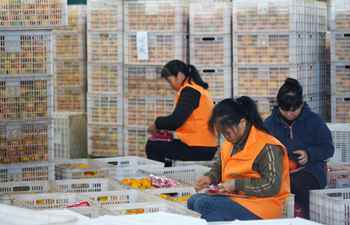Farmers pack navel oranges for delivery in Jiangxi
