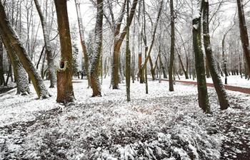 First snowfall of this winter seen in Minsk, Belarus