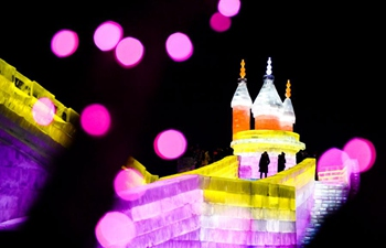 Ice-snow theme park in Changchun opens to public